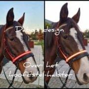 Dabo's Design | Biothane voor Paard & Hond | Horren 4